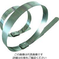 デンカエレクトロン ステンレスバンド 350mm×10本入 DKST-35046-316 208-1496(直送品)