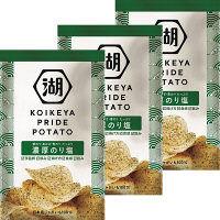 湖池屋 KOIKEYA PRIDE POTATO濃厚のり塩 1セット(3袋)