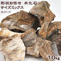 形状お任せ 木化石 サイズミックス 10kg 115656 1個(直送品)