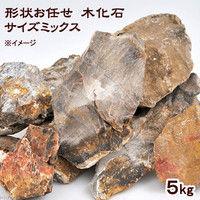 形状お任せ 木化石 サイズミックス 5kg 115667 1個(直送品)