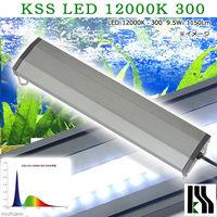 KSS LED 12000K 300 30〜45cm水槽用照明 ライト 熱帯魚 338997 1個 (直送品)