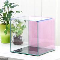 Aqullo(アクロ) バックスクリーン貼付済 チェリーピンク オールガラス27cm水槽 27N 27×27×27cm 単体 75975 1個 (直送品)