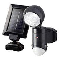 大進 ソーラーセンサーライト2W DLS-1T300 (直送品)