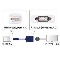 サンワサプライ Mini DisplayPort-VGA変換アダプタ AD-MDPV01 1個