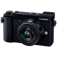 パナソニック デジタル一眼カメラ LUMIX GX7 Mark III 標準ズームレンズキット (ブラック) DC-GX7MK3K-K 1台  (直送品)