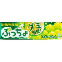 UHA味覚糖 味覚糖 ぷっちょスティック シャインマスカット 10粒×10 4902750905610 1箱(10P入)(直送品)