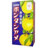 セイカ食品 ボンタンアメ 14粒×10 45145957 1箱(10P入)(直送品)