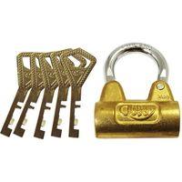 【錠前・カギ】共栄工業 ABLOY PadLock 3020C 5本キー 3020C 1パック(直送品)