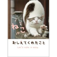 学研ステイフル メッセージブック(ねこ) E10060 3冊(直送品)