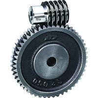 協育歯車工業 KG ウォームホイール G2C 20-M-R2 1個 149-4892(直送品)