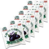 渡辺泰 乳酸発酵 ナスの肥料 2個入り(50g) WTLP-200276 1セット(6袋入)(直送品)