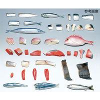 イワイサンプル フードモデル(魚介類) さんま55g 4-7 1個 62-8597-89 ナビスカタログ(直送品)