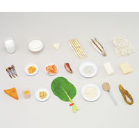イワイサンプル フードモデル カルシウムを多く含む食材 73 1セット 62-8602-21 ナビスカタログ(直送品)