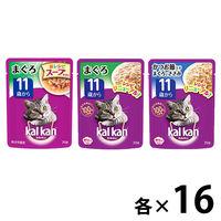 【お得なアソート】カルカン(kalkan)キャットフード パウチ 11歳以上 70g 48袋(3種×各16袋)