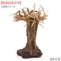 形状お任せ レイアウト盆栽流木 S 2250002375554 1個(直送品)