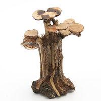 形状お任せ レイアウト盆栽流木 ラダータイプ L 2250008613162 1個(直送品)