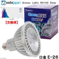 ボルクスジャパン Grassy LeDio Deep/ディープ 4560381572566 1個(直送品)
