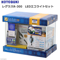 寿工芸 レグラス Rー300 LEDエコライトセット 4972814013964 1セット(直送品)