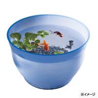 スドー 金魚の小鉢 るり(瑠璃) 金魚鉢 4974212055669 1個(直送品)