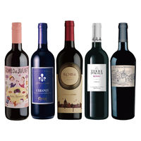 お買い得イタリア辛口赤ワイン5本セット