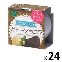 トーヨーフーズ どこでもスイーツ缶 ガトーショコラ ミニ 24缶