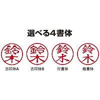 三菱鉛筆 三菱 ピュアモルトネーム印 HN2205UN (取寄品)