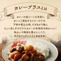 S&Bカレープラス ブーケガルニ3袋