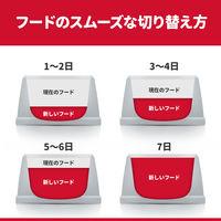 SDキトンチキン子ねこ用 1.8kg