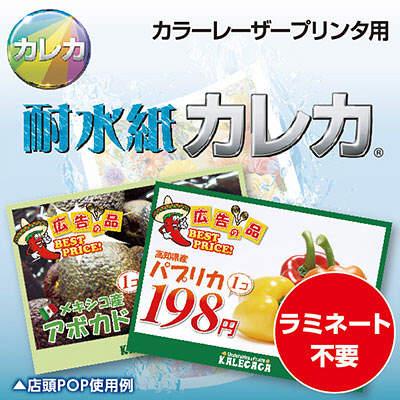 耐水紙カレカ 光沢片面印刷厚手 白 B4 MW5-B4250 1冊(250枚入) (取寄品)