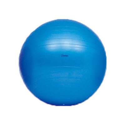 トーエイライト ボディーボール65(最大時直径65cm) H7262 1個 (取寄品)
