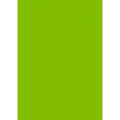 タカ印 ケイコーポスター A4判・緑 薄口 13-5116 1冊(50枚入) (取寄品)