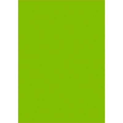 タカ印 ケイコーポスター B4判・緑 薄口 13-5126 1冊(50枚入) (取寄品)