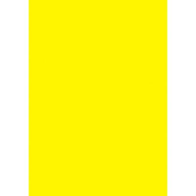 タカ印 ケイコーポスター A4判 レモン 13-5165 1冊(100枚入) (取寄品)