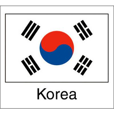 タカ印 国旗シール Korea 22-2511 1袋(96片(24片×4シート)入×10冊) (取寄品)
