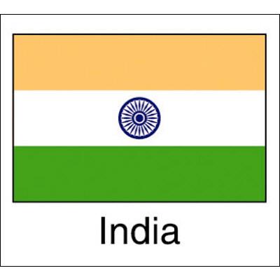 タカ印 国旗シール India 22-2519 1袋(96片(24片×4シート)入×10冊) (取寄品)