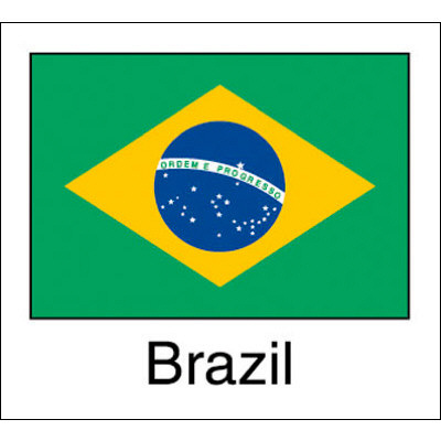 タカ印 国旗シール Brazil 22-2525 1袋(96片(24片×4シート)入×10冊) (取寄品)