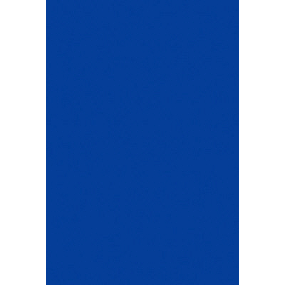 タカ印 B3いろ紙 藍 31-311 1袋(100枚入) (取寄品)