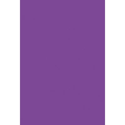 タカ印 B3いろ紙 紫 31-313 1袋(100枚入) (取寄品)