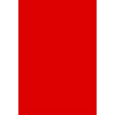 タカ印 B4いろ紙 赤 31-401 1袋(100枚入) (取寄品)