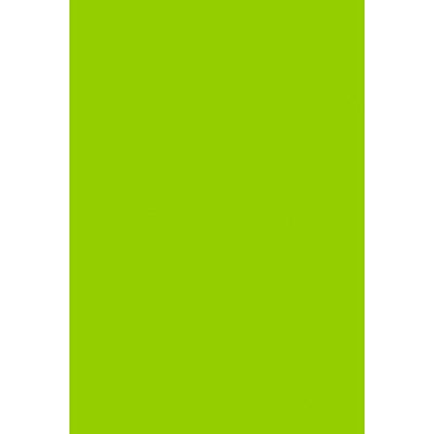 タカ印 B4いろ紙 黄緑 31-407 1袋(100枚入) (取寄品)