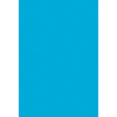 タカ印 B4いろ紙 水 31-412 1袋(100枚入) (取寄品)