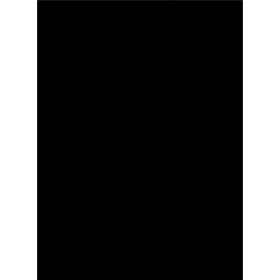 タカ印 艶紙 黒 31-9 1袋(50枚入) (取寄品)