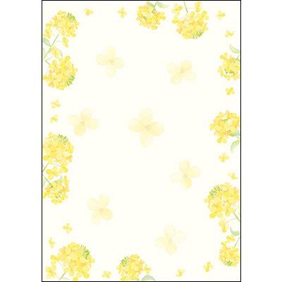 タカ印 和柄OA用紙 和ごころ 菜の花 4-1031 1袋(10枚袋入×5冊) (取寄品)
