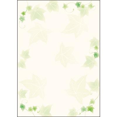 タカ印 デザインペーパーフラール アイビー 4-3003 1袋(10枚袋入×5冊) (取寄品)