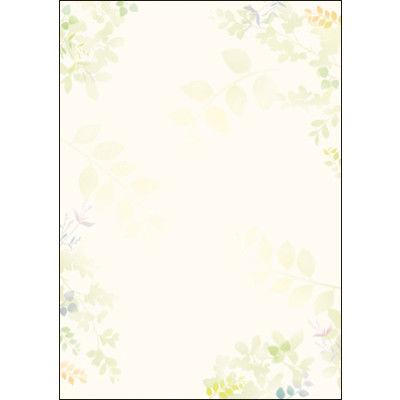 タカ印 デザインペーパーフラール グリーンズ 4-3007 1袋(10枚袋入×5冊) (取寄品)