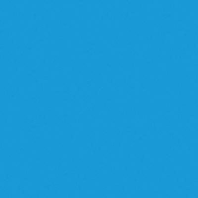 タカ印 プリントカラー 15cm角 水 30-12 1箱(100枚袋入×10冊) (取寄品)