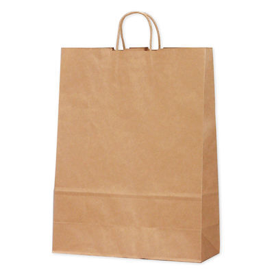 タカ印 手提げバッグ 10P未晒無地 特大 50-6401 1袋(10枚入り) (取寄品)