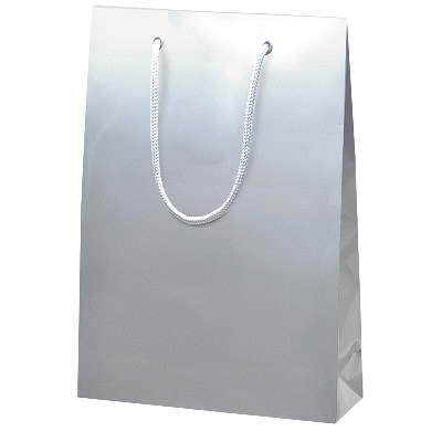 手提げ紙袋 ギン 10枚