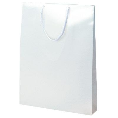 手提げ紙袋 シロ 10枚