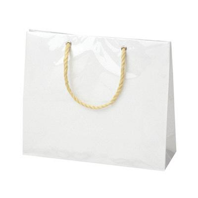 タカ印 手提げバッグ キャリーバッグS 白 50-6533 1セット(5枚入り) (取寄品)